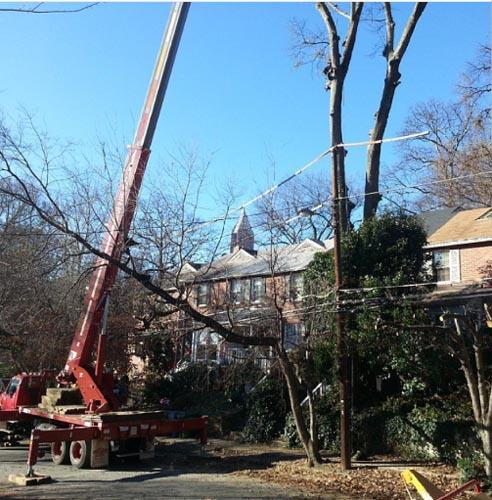 naz_tree_using_crane_in_residential_area_atlanta_ga
